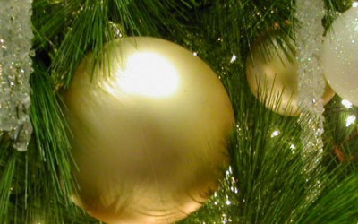 TRAINING: Getting your website ready for Xmas 2015
